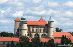 Zamek w Nowym Wiśniczu (woj. małopolskie). http://www.malopolska24.pl/index.php/2013/08/zamek-w-nowym-wisniczu/