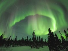Bucket List- Aurora Borialis- I have to see this in person some day! Beautiful!