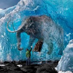 Mammoths in the Arctic being preserved!!