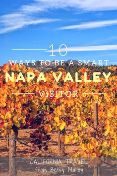 How to Hack a Napa Valley Vacation: Use these tips to avoid rookie mistakes, bad clothing choices and getting stuck in traffic.