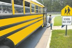 Fun Facts About School » Back-to-School » Surfnetkids