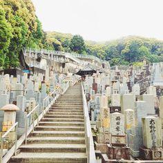 TRAVELING TO KYOTO, JAPAN | D E S I G N L O V E F E S T | Bloglovin'
