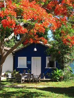trancoso, brazil << crossing the american dream with mine since 1650