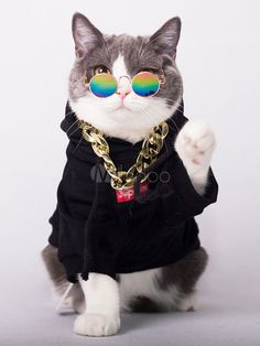 Cat Black Top Halloween Costume - Emma Lee home Top Halloween Costumes, Pet Costumes, Halloween Kostüm, Cute Funny Animals, Cute Baby Animals, Cute Dogs, Cute Cats Photos, Cute Animal Pictures, Cute Cats And Kittens