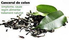 Colon, Cancer, Health, Nature, Plant, Naturaleza, Health Care, Nature Illustration, Off Grid