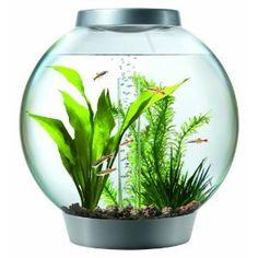 Pet Supplies, biOrb Aquarium Kit with Light Fixture   Pet Shop   Pet Supplies