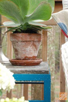Deck Decorating Ideas: Distressed terra cotta pot