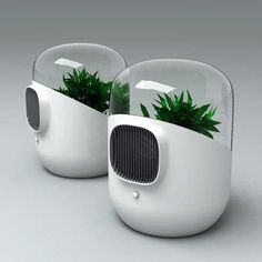 [Image: Bel-Air by Mathieu Lehanneur].These air filters, by Mathieu Lehanneur, seem so hilariously inefficient and bizarre to me, but hey – I love the idea. They turn plants into air filtration mac… Bel Air, Inspektor Gadget, Mathieu Lehanneur, Eco Design, Design Ideas, Mini Greenhouse, Greenhouse Ideas, 3d Models, Dezeen
