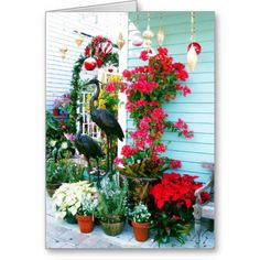 Tropical Christmas Scene Greeting Cards with flamingos and poinsettias
