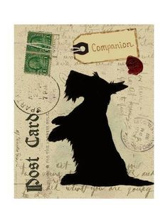 Scottie Silhouette Poster Print by Nancy Shumaker x Postcard Printing, Dog Silhouette, Poster Prints, Art Prints, Little Dogs, Dog Art, Dog Love, Scottish Terriers, Scottie Dogs
