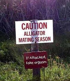 Funny Signs or Pictures 09 by DrJohnBullas, via Flickr