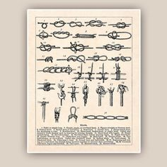 Sailor Knots Print Nautical knots Marine Knots Poster by AlgaNet, $25.00