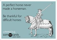 A perfect horse never made a horseman. Be #thankful for difficult horses