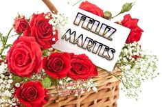 Flores Rojas para desear un feliz martes