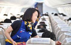 埋め込み画像 Skymark Airlines, Nescafe, Silk Scarves, Aviation, Cabin, Backpacks, Cabins, Backpack, Cottage