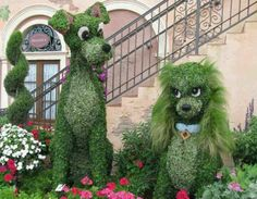 Awesome topiary!