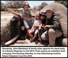 DEMAND Namibia: Stop ALL Hunting of Rare Desert Elephants!!!!!!!!!   PLEASE SIGN AND SHARE VIRALLY IN OUTRAGE!!!!!!