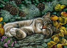 Cat      Art of irina garmashova