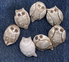 old owls