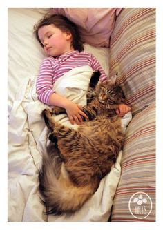 They share a daily after-lunch nap… | How Thula The Cat Helps A Girl With Autism Live Life More Fully
