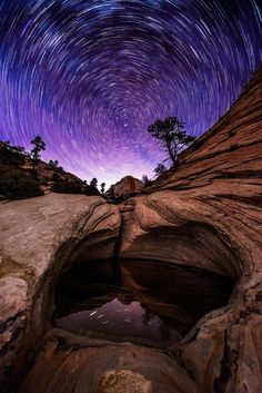 Pool of Stars, Zion National Park by zach bright