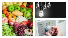 Le dieci mosse per una vita eco friendly