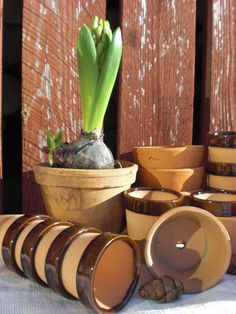succulent planters rustic clay terra pots by vintagefullhouse $ 16.40 for set of 3