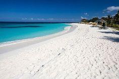 オーストラリアの東海岸にある世界一白いビーチとしてギネスブックに登録されているビーチ「ハイアムスビーチ(hyams beach)」。ビーチは驚くほどの白さで、歩くとキュッキュと音がなる鳴き砂になっています。