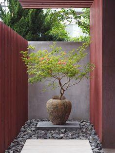 Back Garden Design, Backyard Garden Design, Backyard Landscaping, Japanese Garden Backyard, Modern Japanese Garden, Indoor Zen Garden, Interior Garden, Garden Styles, Garden Projects