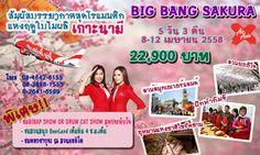 BIG BANG SAKURA สัมผัสบรรยากาศโรแมนติกแห่งฤดูใบไม้ผลิที่ เกาะนามิ | มนัสนันท์ ทราเวล Manassanant Travel Co.,Ltd