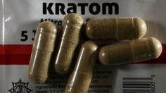 Kratom users rely on it for pain relief or to mitigate opioid withdrawal symptoms.