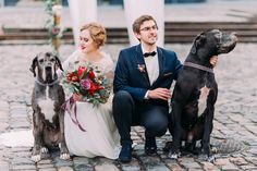 Your wedding is the most important day in your life, and everyone you love most should be there – including your dog. We've gathered ten of the most adorable dog wedding ideas to include your pup in the big day. Dog Wedding, Wedding Advice, Wedding App, Wedding Bride, Wedding Photos, Bebas Closet, Photos With Dog, Rainbow Wedding, Bridal Shoot