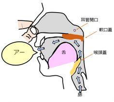Frenzel フレンゼル・テクニック(Frenzel Technique)
