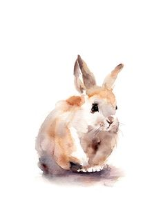 Bunny Art Print Fine Art Print from Watercolor Painting Watercolour Wall Art PRINT DETAILS: printed on Epson art printer specialised in museum quality printing, on heavy weight archival (acid free, special coated, non-yellowing) paper. Each art print is a reproduction of MY ORIGINAL and ONE OF A KIND ART WORK. SIZES: please choose from the drop menu. There are standard inches sizes and A-sizes also. Custom sizes are available too, please contact me for quotation. Signed and dated on the b...