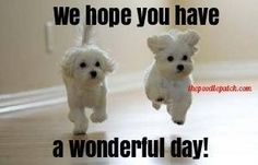 WE HOPE YOU HAVE A WONDERFUL DAY!!!