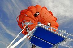 Turks and Caicos Parasailing The Turk, Parasailing, Turks And Caicos, Islands, Vacations, Beach, Outdoor Decor, Holidays, Vacation