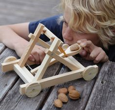 Catapult Set