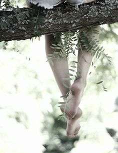 barefoot climbing trees