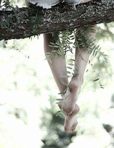 barefoot climbing trees