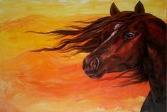 Horse. Animal Painting - Summer Wind by Sherry Shipley