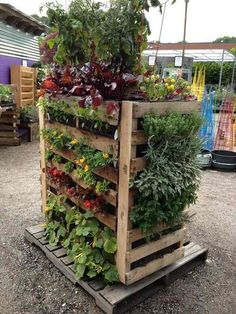 27 Tower Garden Ideas For Vertical Gardening. Pallet GardeningPallets  GardenWood ...