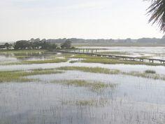 Shem Creek, South Carolina