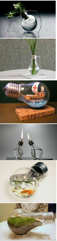 What to do with old light bulbs... cute