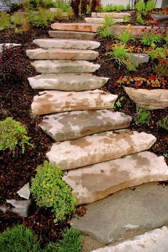 Ourcropping steps making a hill interesting with accent plantings Our planting steps make a hill with accent plantings interesting Interesting newsChili cultivation instructionsCastle Hill on The Crane Estate in Ipswich Massach Landscape Stairs, Outdoor Stairs, Backyard Landscaping Designs, Outdoor Gardens, Landscaping With Rocks, Hillside Landscaping, Backyard, Garden Stairs, Outdoor Walkway