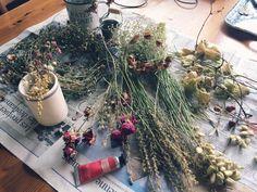 Kiimiさんが投稿した画像です。他のKiimiさんの画像も見てませんか?|おすすめの観葉植物や花の名前、ガーデニング雑貨が見つかる!🍀GreenSnap(グリーンスナップ)