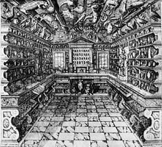 cabinets of curiosity - Google Search