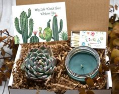 "My Life Would Succ Without You Gift Box - Thank You Gift Box - Miss you Gift - Live succulent Gift Box - Thinking of You Gift - Send a gift - Please include your gift message and any other notes in the ""Note to seller"" section, to avoid - Miss You Gifts, Thank You Gifts, Gifts For Mom, Sister Gifts, Succulent Wedding Favors, Succulent Gifts, Cotton Blossom, Wine Gift Baskets, Basket Gift"