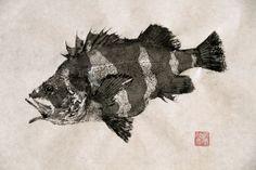 RED BANDED ROCKFISH Barber Pole Fish  by FishingForGyotaku on Etsy, $375.00