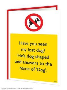 brainboxcandy.com - Lost Dog Warning Greeting Card, £2.50 (http://www.brainboxcandy.com/lost-dog-warning-greeting-card/)