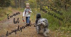 Leuk je hond mee op vakantie, geniet en ervaar....